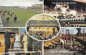 spof021521 - Irish Sweep Drum Horse Racing, Trotter, Trotters, Postcard
