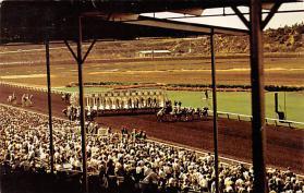 spof021522 - Del Mar, California, USA Horse Racing Postcard
