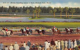 spof021527 - Hialeah Park, Miami, USA Horse Racing Postcard