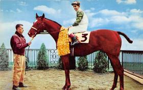 spof021538 - Summer Tan, Delaware Township, NJ USA Horse Racing Old Vintage Antique Postcard
