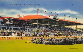 spof021547 - Hialeah Park, Miami, FL USA Horse Racing Old Vintage Antique Postcard