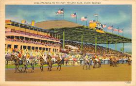 spof021549 - Miami, FL USA Horse Racing Old Vintage Antique Postcard