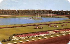 spof021552 - Miami, FL USA Horse Racing Old Vintage Antique Postcard