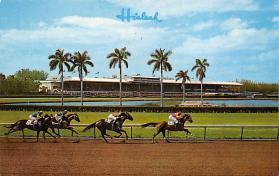 spof021553 - Miami, FL USA Horse Racing Old Vintage Antique Postcard