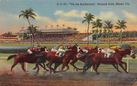 spof021554 - Hialeah Park, Miami, FL USA Horse Racing Old Vintage Antique Postcard