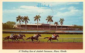 spof021556 - Miami, FL USA Horse Racing Old Vintage Antique Postcard