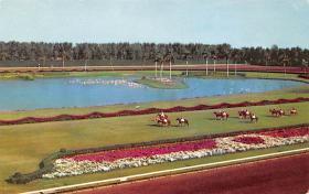 spof021565 - Hialeah Park, Miami, FL USA Horse Racing Old Vintage Antique Postcard