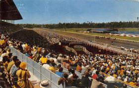 spof021566 - Hollywood Park Inglewood, CA USA Horse Racing Old Vintage Antique Postcard