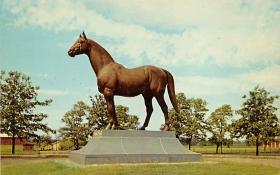 spof021571 - Man O War Statue, Lexington, KY USA Horse Racing Old Vintage Antique Postcard