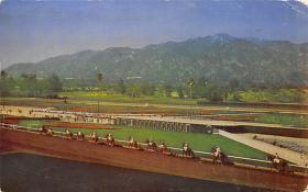 spof021575 - Santa Anita Park Arcadia, CA USA Horse Racing Old Vintage Antique Postcard