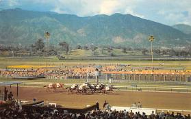 spof021576 - Santa Anita Park Arcadia, CA USA Horse Racing Old Vintage Antique Postcard