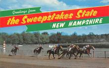 spof021586 - Concord, NH USA Horse Racing Old Vintage Antique Postcard