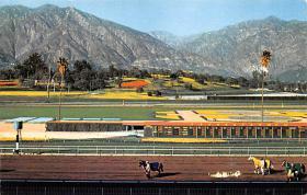 spof021596 - Santa Anita Park Arcadia, CA USA Horse Racing Old Vintage Antique Postcard