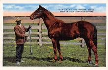 spof021603 - Man-O-War Bred in Old Kentucky Horse Racing Old Vintage Antique Postcard