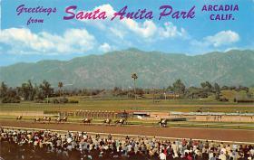 spof021611 - Santa Anita Park Arcadia, CA USA Horse Racing Old Vintage Antique Postcard