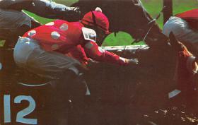 spof021636 - Saratoga, NY, USA Aqueduct, Belmont Park Horse Racing Postcard