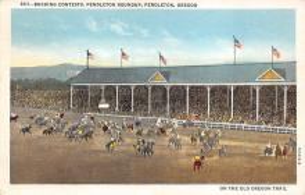 spof021639 - Pendleton, Oregon, USA Bucking Contests, Pendleton Roundup Horse Racing Postcard