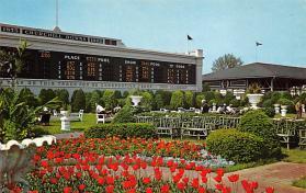 spof021642 - Louisville, KY, USA Clubhouse Garden, Churchill Downs Horse Racing Postcard