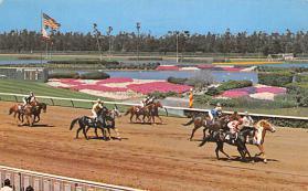 spof021651 - Inglewood, CA, USA Hollywood Park Horse Racing Postcard