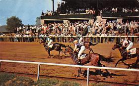 spof021652 - Lexington, KY, USA Keeneland Race Track Horse Racing Postcard