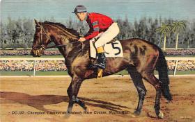 spof021656 - Miami Florida, USA Champion Citation at Hialeah Race Course Horse Racing Postcard