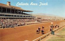 spof021657 - Tijuana, BC Mexico Caliente Race Track Horse Racing Postcard
