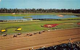 spof021658 - Hialeah, FL, USA Hialeah Race Course Horse Racing Postcard