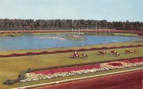 spof021659 - Miami, FL, USA Hialeah Race Course Horse Racing Postcard