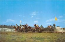 spof021660 - Camden, SC, USA Clearing the Hurdles Horse Racing Postcard