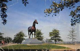 spof021670 - Lexington, KY, USA Man O War Horse Racing Postcard