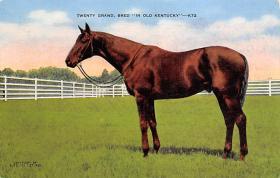 spof021675 - Kentucky, USA Twenty Grand, Bred Horse Racing Postcard