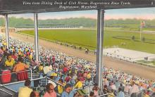spof021677 - Hagerstown, Maryland Dining Deck of Club House,  Horse Racing Postcard