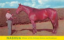 spof021678 - Lexington, KY, USA Nashua, Winner of Belmont Stakes, Preakness Horse Racing Postcard