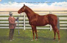 spof021680 - Lexington, KY, USA Man O War Horse Racing Postcard