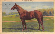 spof021700 - Kentucky, USA Man O War Horse Racing Postcard