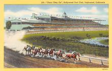 spof021704 - Inglewood, CA, USA Hollywood Turf Club Horse Racing Postcard