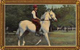 spof021705 - Horse Racing Postcard