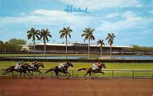 spof021710 - Miami, FL, USA Hialeah Race Course Horse Racing Postcard