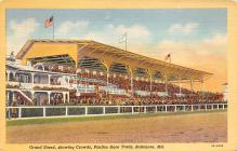 spof021733 - Baltimore, MD, USA Pimlico Race Track Horse Racing Postcard