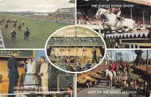 spof021737 - Irish Sweep Drum Horse Racing Postcard