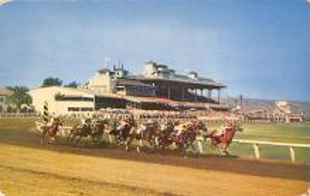 spof021738 - Tijuana, Mexico Caliente Race Track Horse Racing Postcard