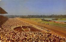 spof021765 - Inglewood, CA, USA Hollywood Park Racetrack Horse Racing Postcard