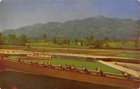 spof021766 - Arcadia, CA, USA Santa Anita Park Horse Racing Postcard