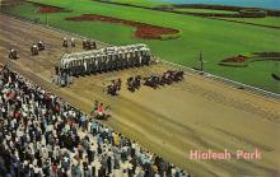 spof021773 - Hialeah, FL, USA Hialeah Park Horse Racing Postcard
