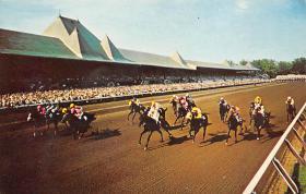 spof021775 - Saratoga, NY, USA Saratoga Race Track Horse Racing Postcard