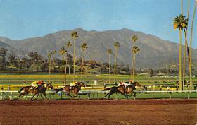 spof021776 - Arcadia, CA, USA Santa Anita Park Horse Racing Postcard