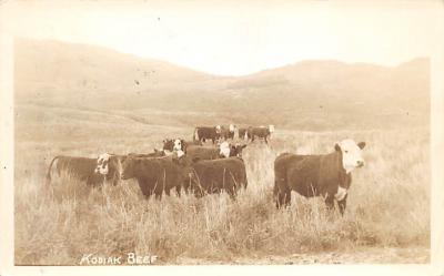top008647 - Cows