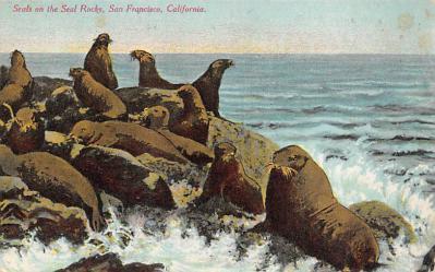 top008853 - Seals