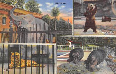 top008977 - Zoos