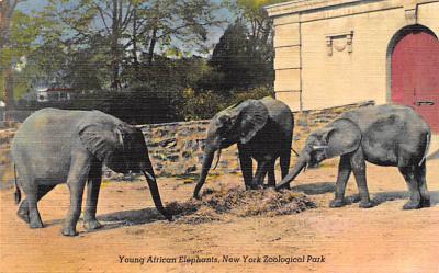 top009049 - Zoos